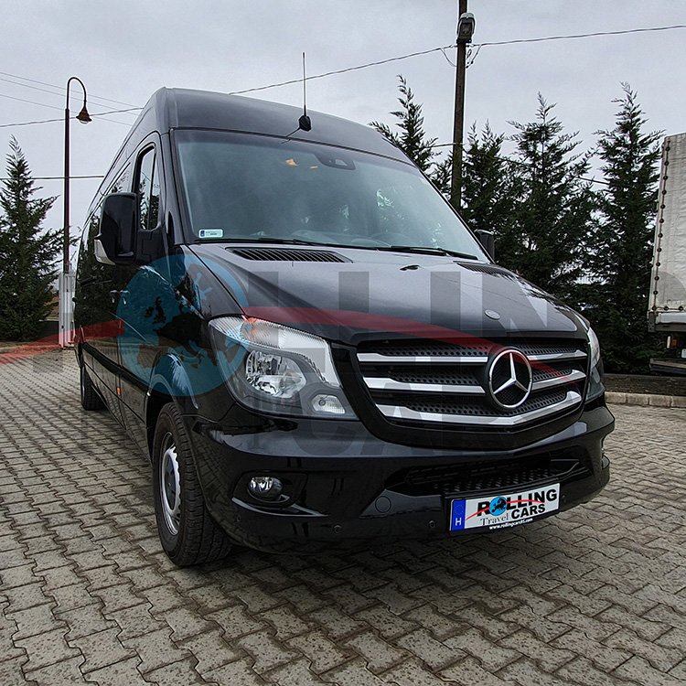 Luxury Sprinter Jet